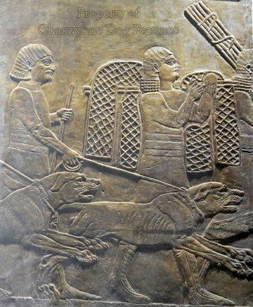 169-2 Assyrian Mastiffs