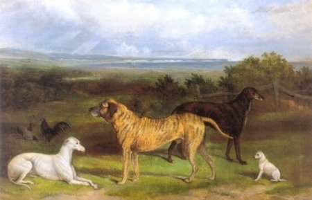 Mastiff art 1863