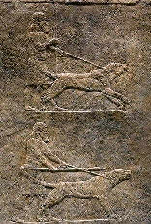 part-of-an-assyrian-relief